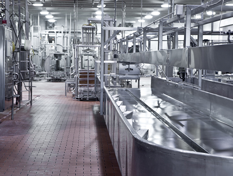 processing-industry